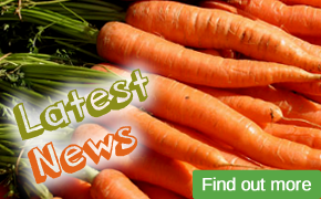 Latest News from Interfruit